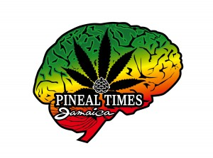 Pineal Times Logo final png-HR-1