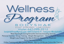 Wellness Program BodyShak